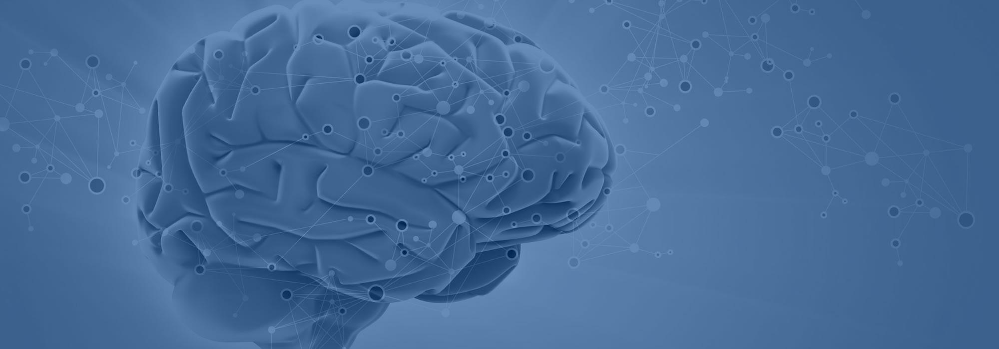 cerveau700bluedarker2